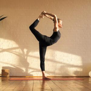 Bewegung und Gelenke
